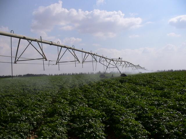 Wadi Natron Farm